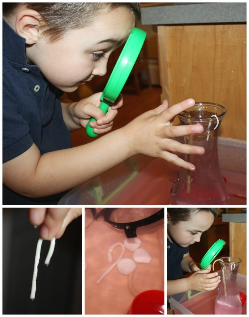 Peppermint water science sensory play examining changes in candy canes