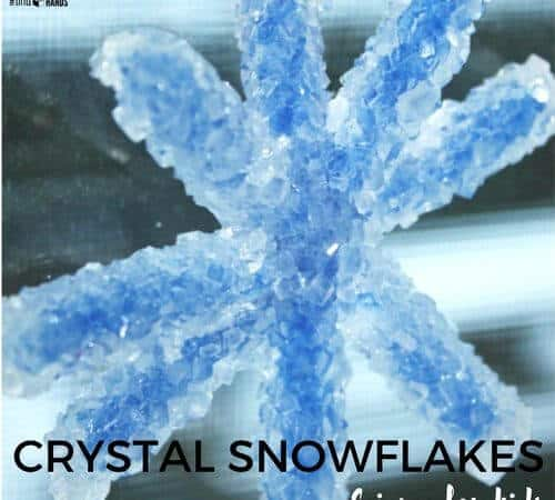 Crystal Snowflake Ornament Science Activity for Kids