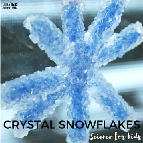 Crystal Snowflake Ornaments Science Made With Borax