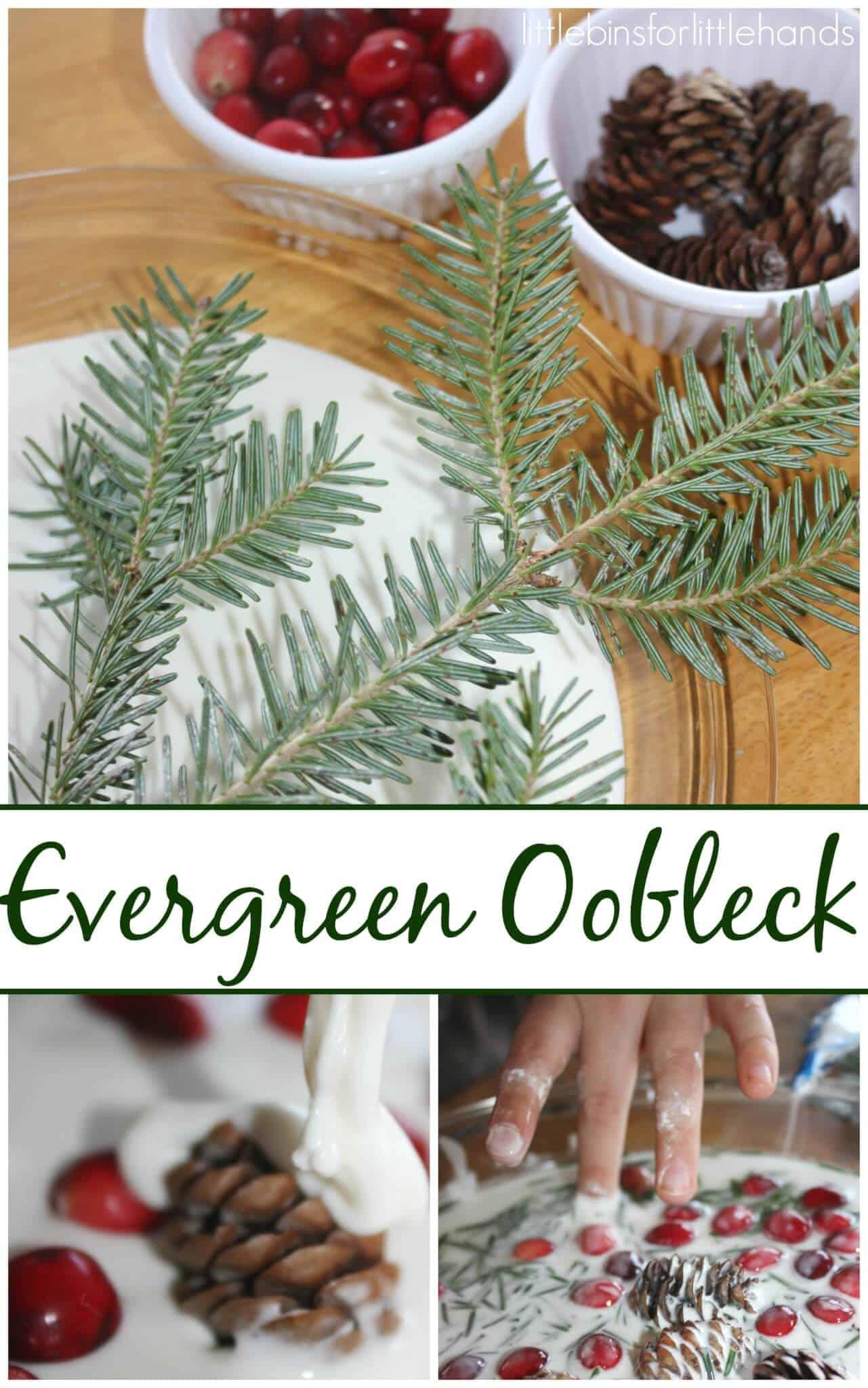 Evergreen Oobleck Science Winter Sensory Play