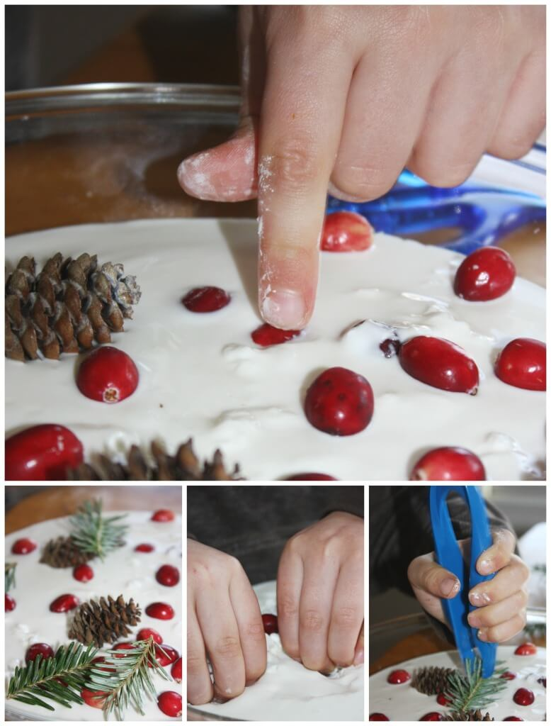 Evergreen oobleck science sensory play decorating cranberries pine cones fine motor play