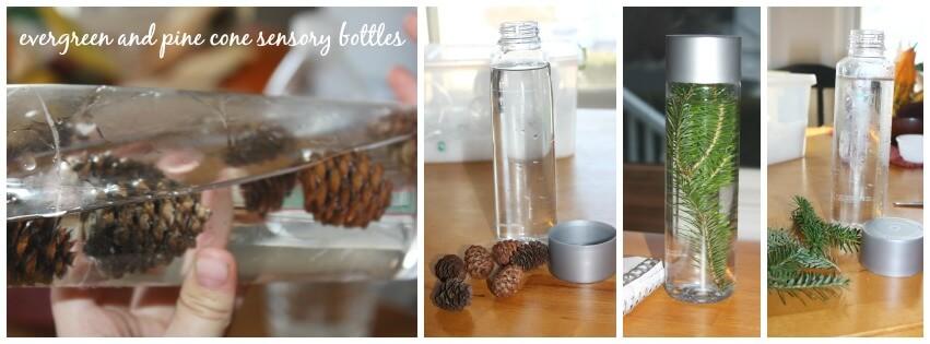 Evergreen sensory bottles pine cone sensory bottles