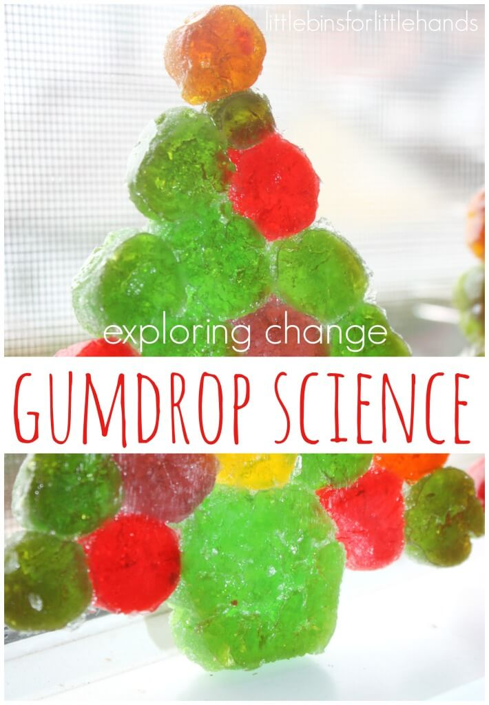 Gumdrop science exploring change dissolving, heating, candy math