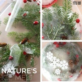 Nature Ice Melt Science Activity for Kids Winter Science