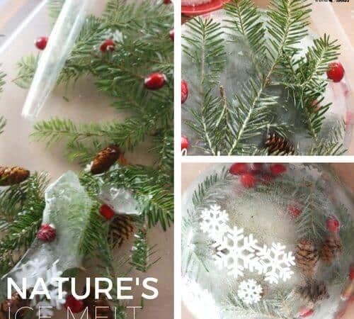 Nature Ice Melt Science and Winter Activity for Kids