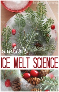 Winter Nature Ice Melt Science Sensory Experiment Water Sensory Play