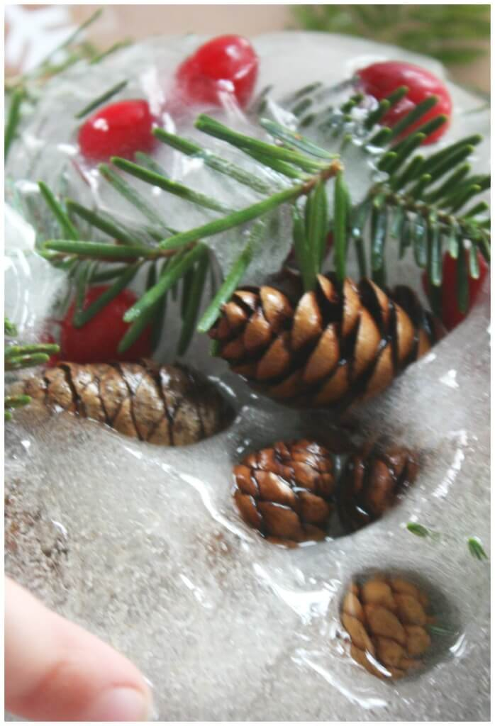Winter Nature Ice melt Science Sensory Play finding pinecones