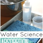 Absorption Science for Kids STEM activity Water Science Experiement