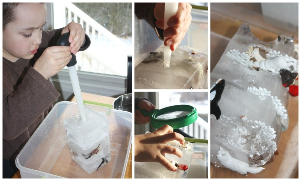 Arctic Ice Sensory Play Winter Ice Melt Arctic Activity