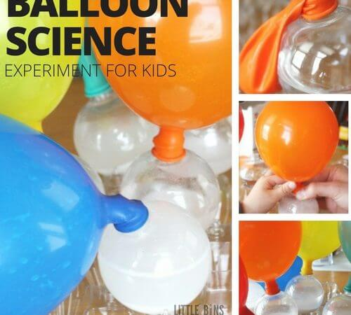 Balloon Baking Soda Vinegar Science Experiment for Kids