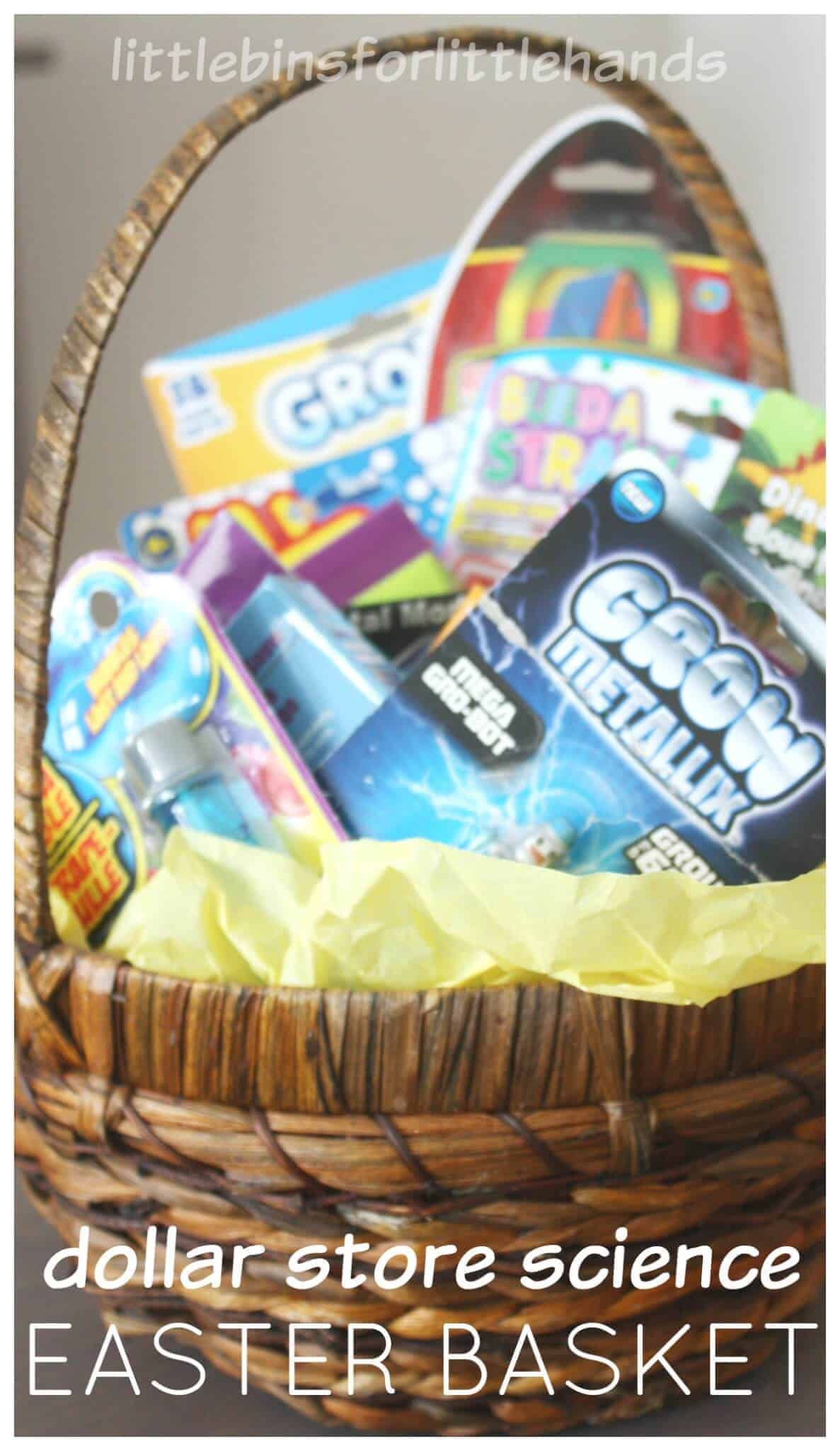 Dollar store science kits for easter basket ideas and fillers negle Choice Image