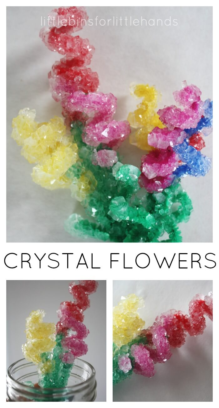 crystal flowers spring science experiment and craft for mother day