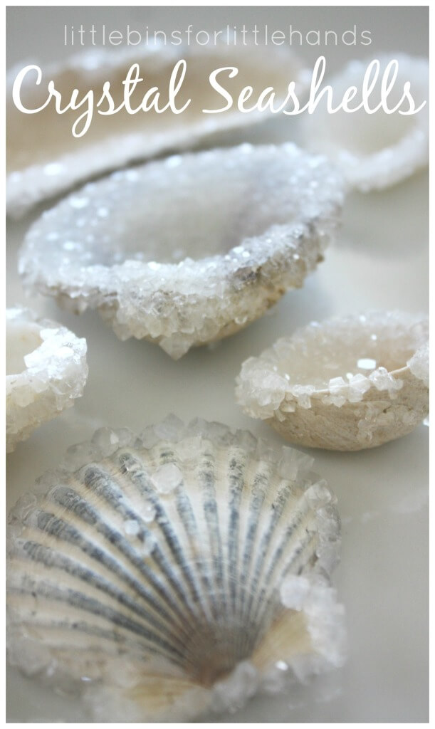 make crystal seashells
