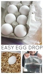 Egg Drop Activity Egg Science STEM Easter Activity