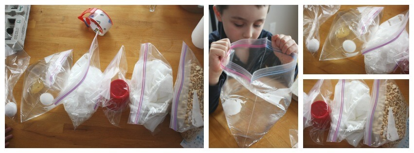Egg Drop Challenge Filled Zip Lock Bags Eggs Materials to protect eggs