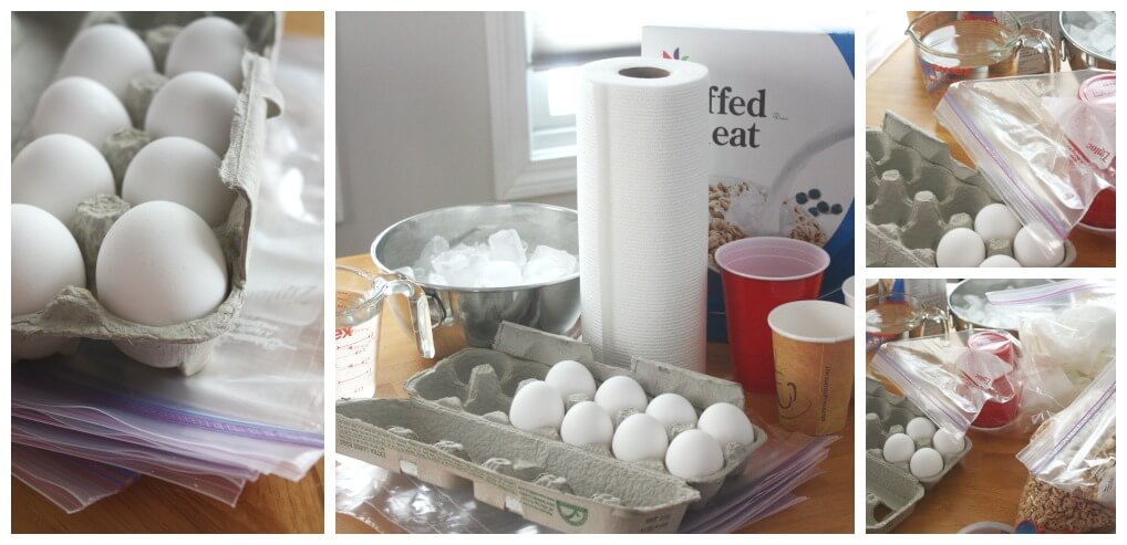 Egg Drop Challenge Set Up Egg Zip Locks Bags Cereal Ice Water Paper Cups