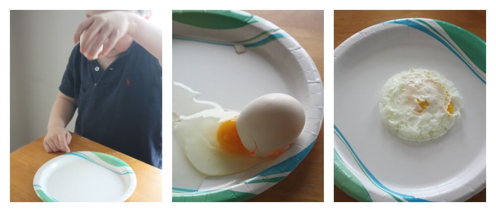 Egg Gravity Experiment Irreversible Change Cooking Egg