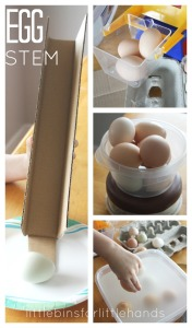 Egg STEM Real Egg Science