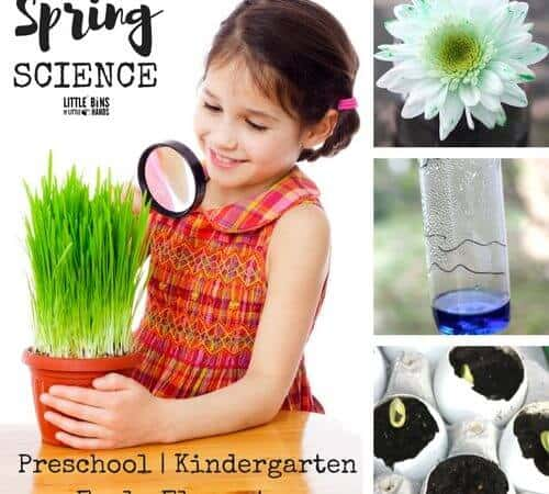 Spring Science Activities and Experiments for Indoors and Outdoors