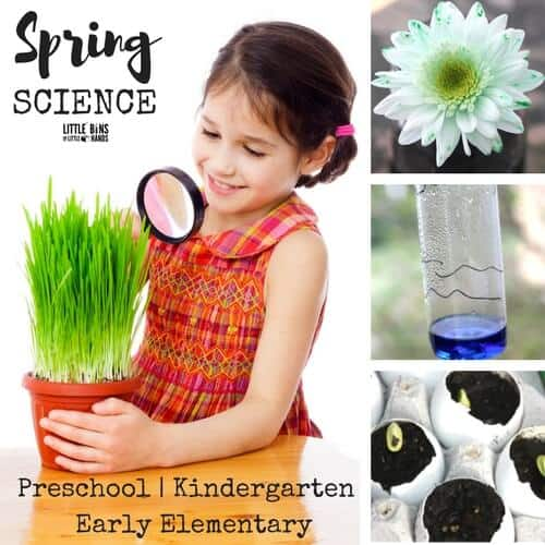 plant activities for spring science