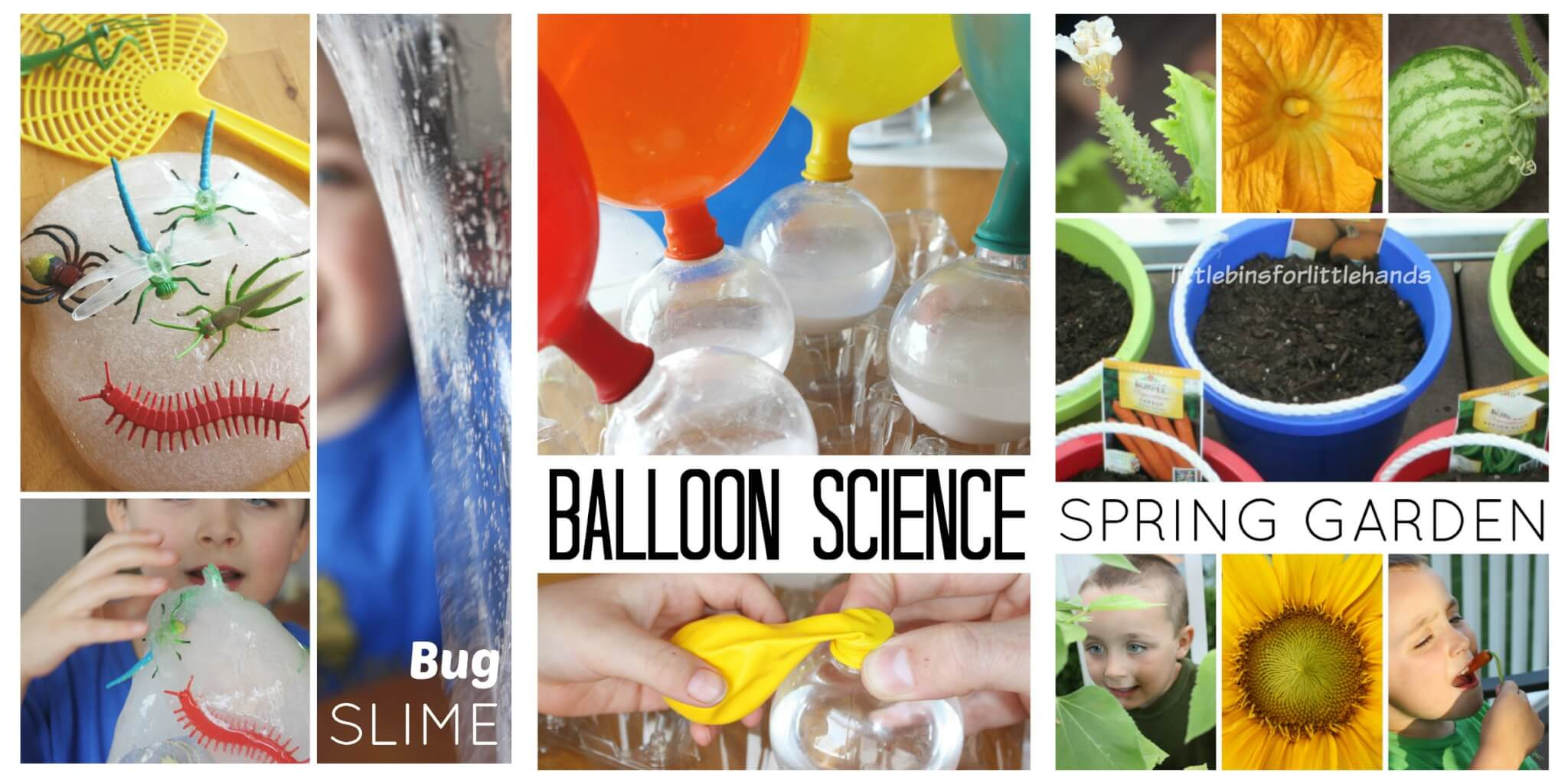 Spring Science Bugs Balloon Experiment