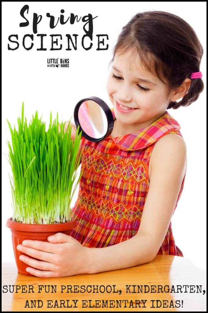 spring stem and science for preschoolers