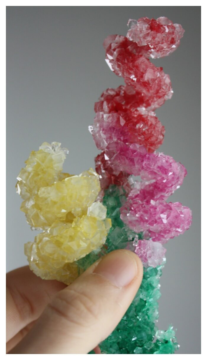 crystal flowers spring science with borax crystal growing on pipe cleaners