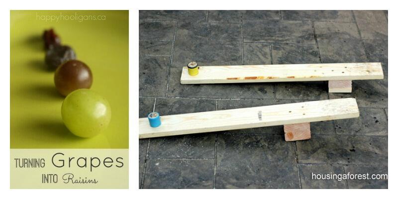 25 Summer Science Ideas Grapes raisins Catapults