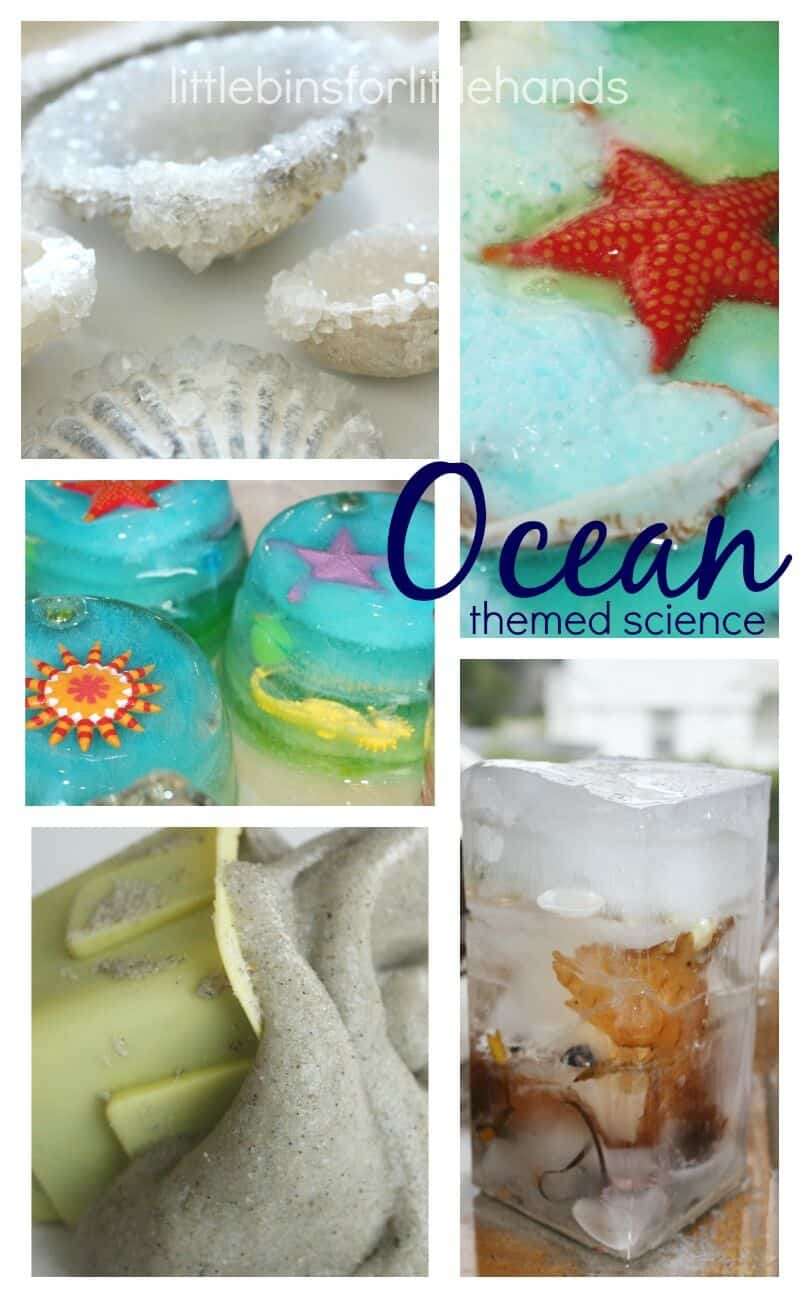 summer STEM activities - learn about the ocean