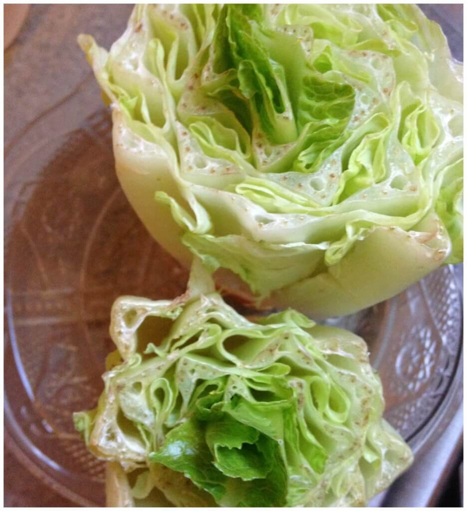 Regrowing lettuce from old lettuce ends