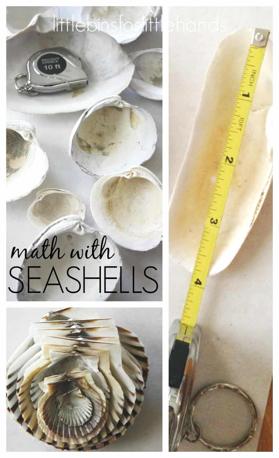 Measuring Seashells Math Activity for Kids