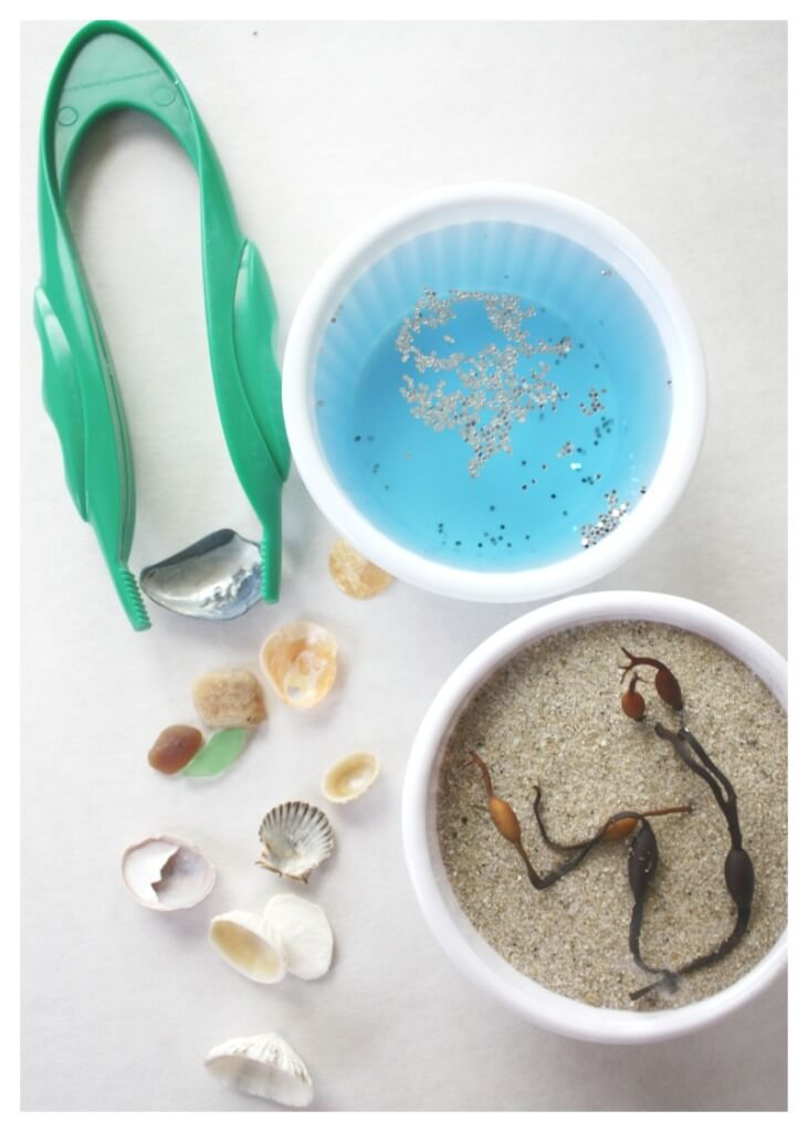 Beach Discovery Bottle Sensory Science