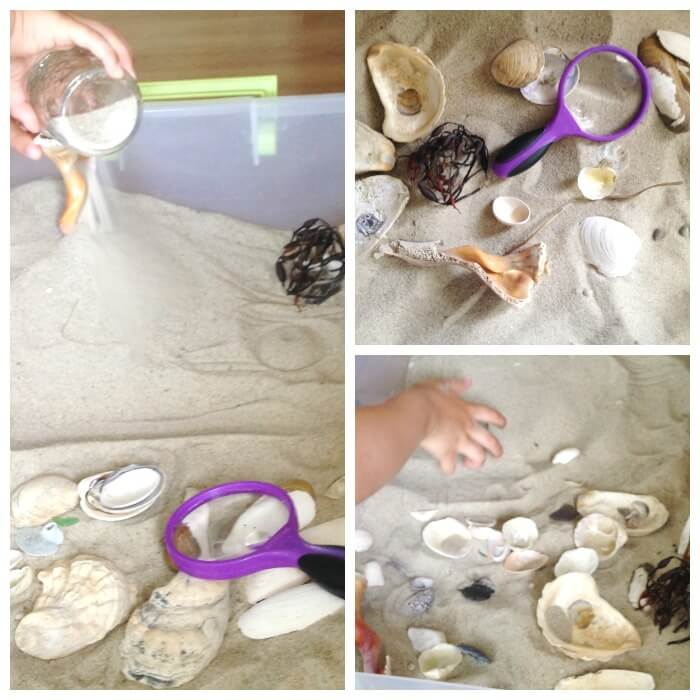 Beach Sensory Bin Ocean Activity