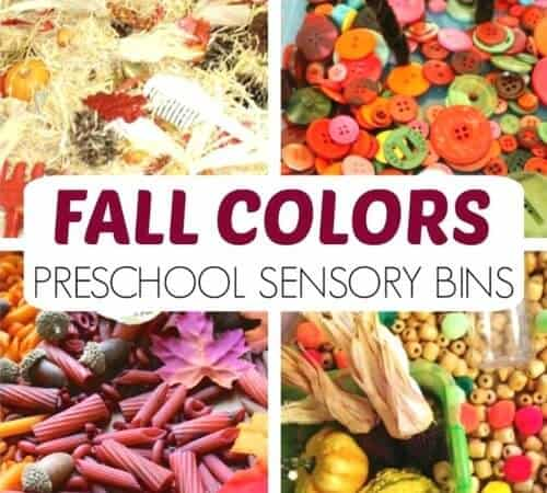 Best Preschool Fall Sensory Bins And Sensory Play Activities