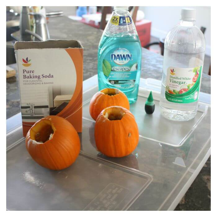Mini Pumpkin Volcano Supplies