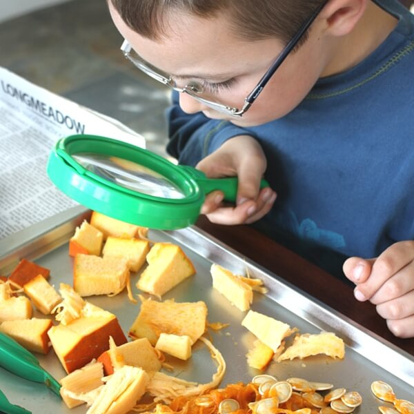 Pumpkin Inveigation Science Observing with Magnifying Glass
