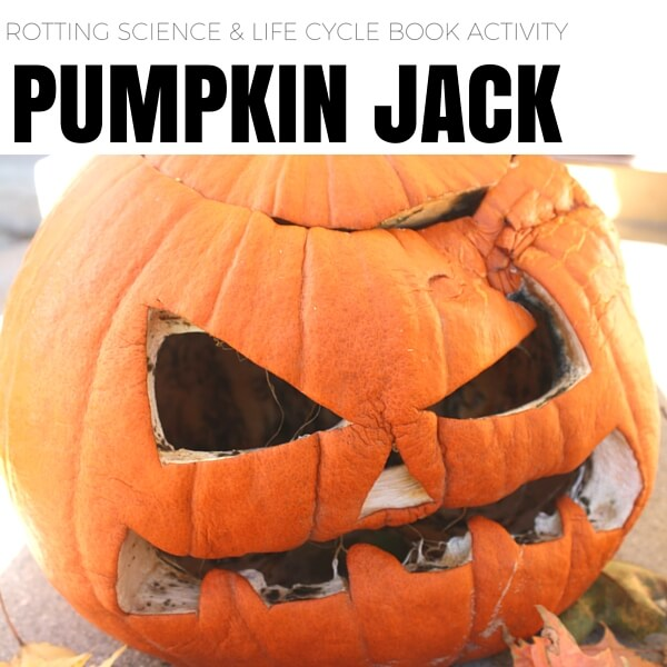 Pumpkin Jack Rotting Science Activity