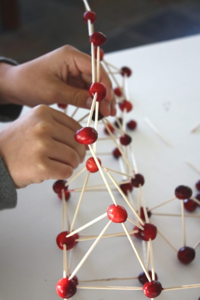 Building Structures with Cranberries
