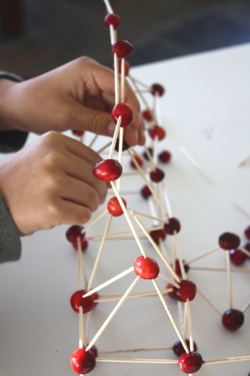 Thanksgiving Stem Activity Building Cranberry Structures