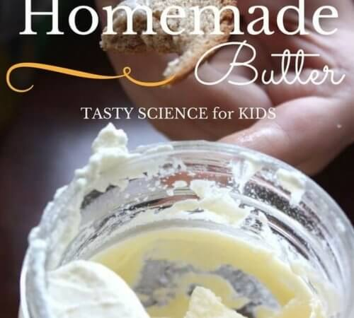 Make Homemade Butter Thanksgiving Edible Science