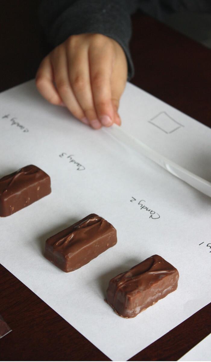 Chocolate Lab Candy