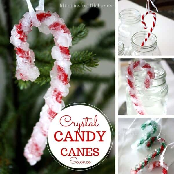 Crystal Candy Cane for Christmas Science Activities