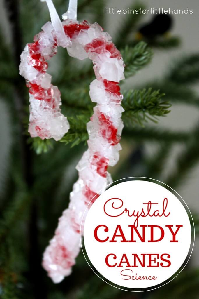 Christmas Science Growing Crystal Candy Canes Experiment