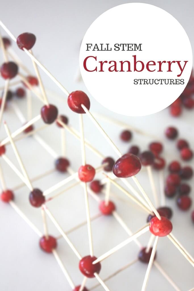 Cranberry Structures Thanksgiving STEM Activity Building Idea