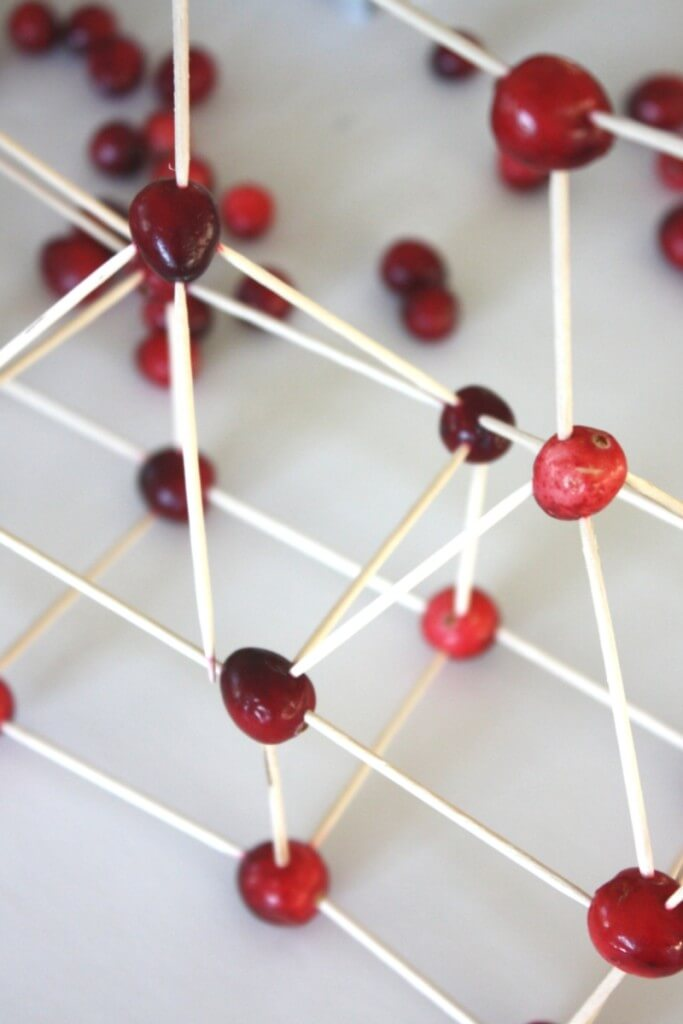 Cranberry Structures Thanksgivng Engineering Activity