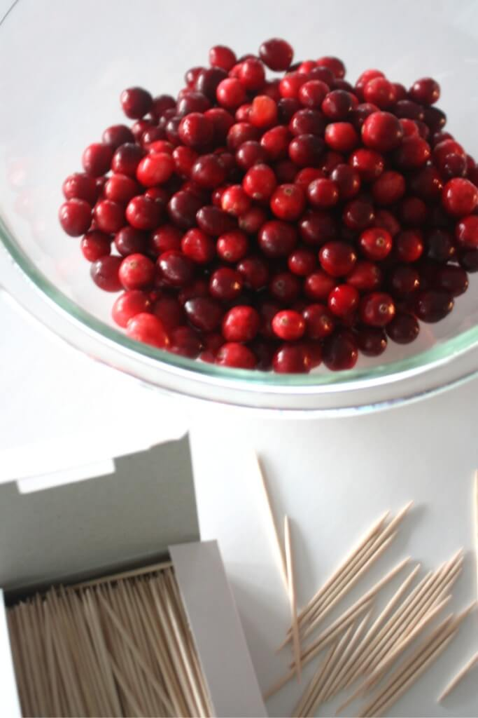 Cranberry Structures Toothpicks and Cranberries