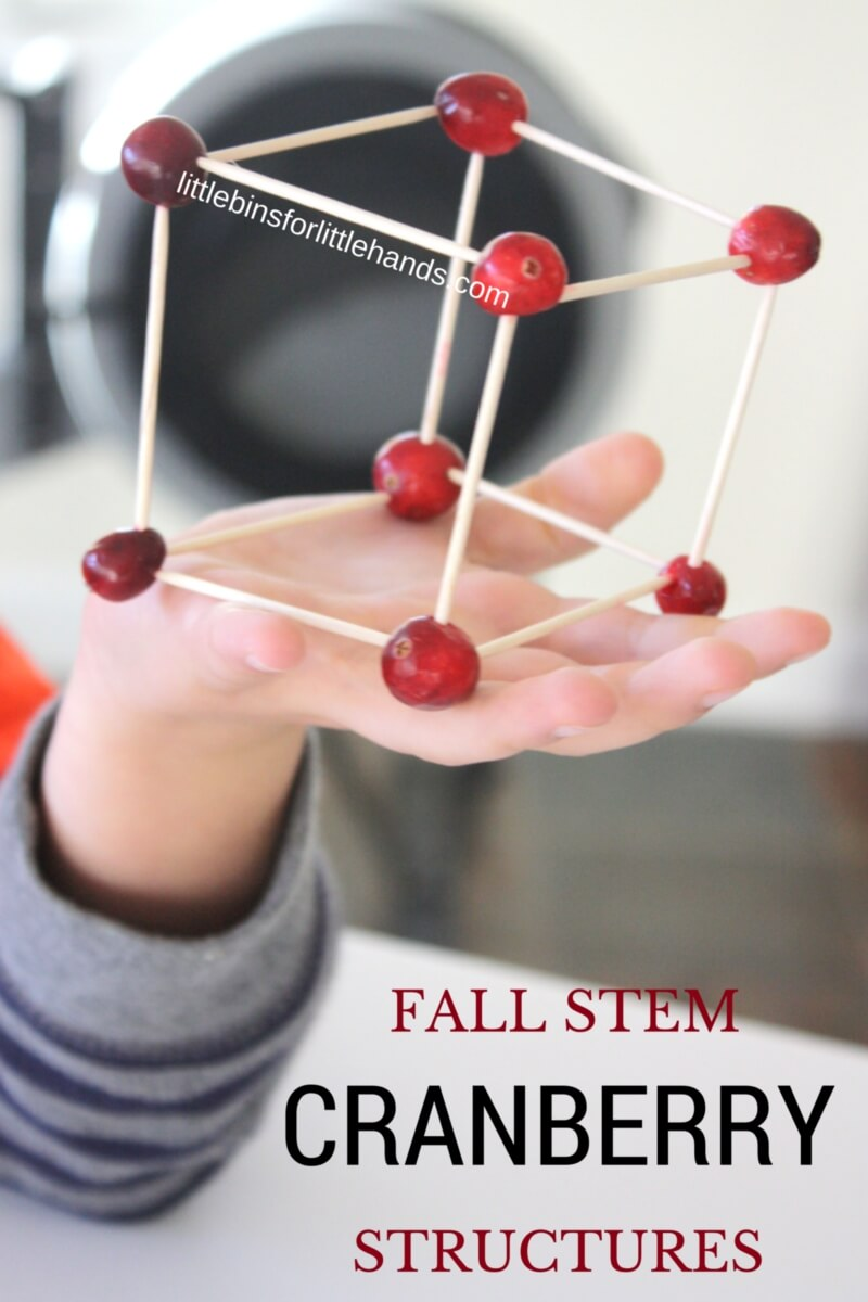 Fun and simple Thanksgiving STEM activity building cranberry structures with kids.