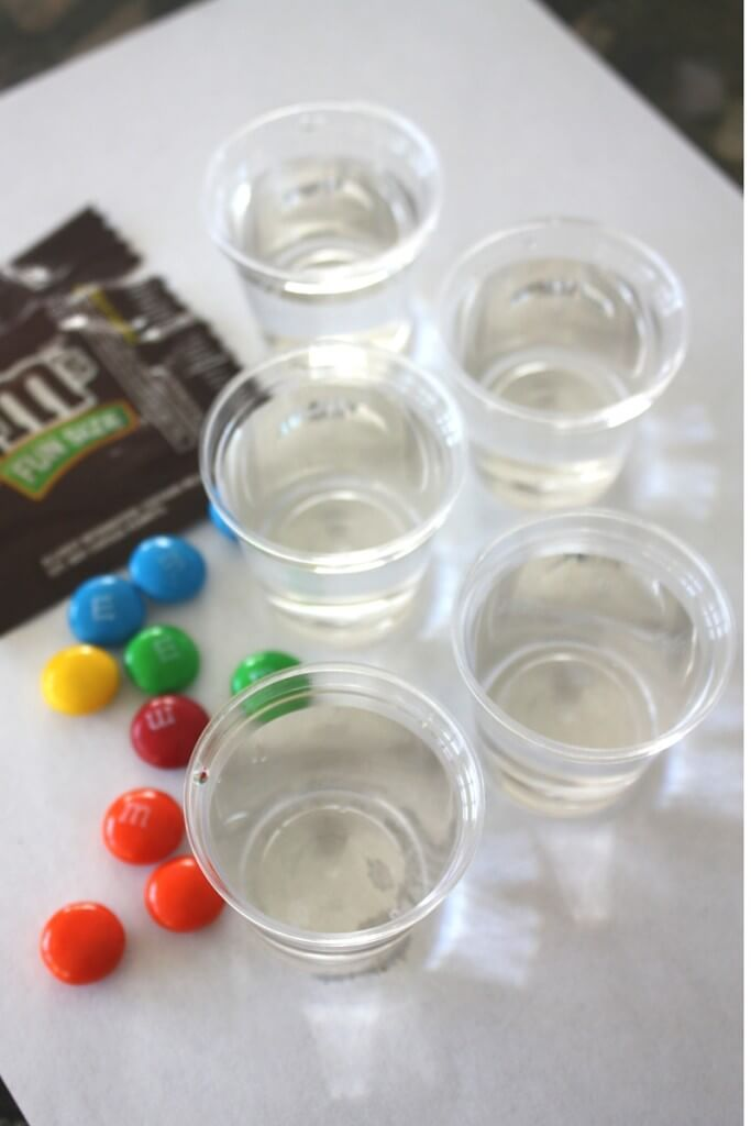 Floating M Candy Experiment Set Up M&M Science
