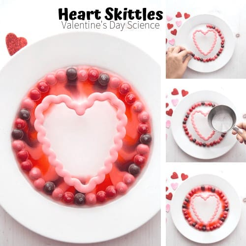 Valentines Day Science with Skittles Candy Science
