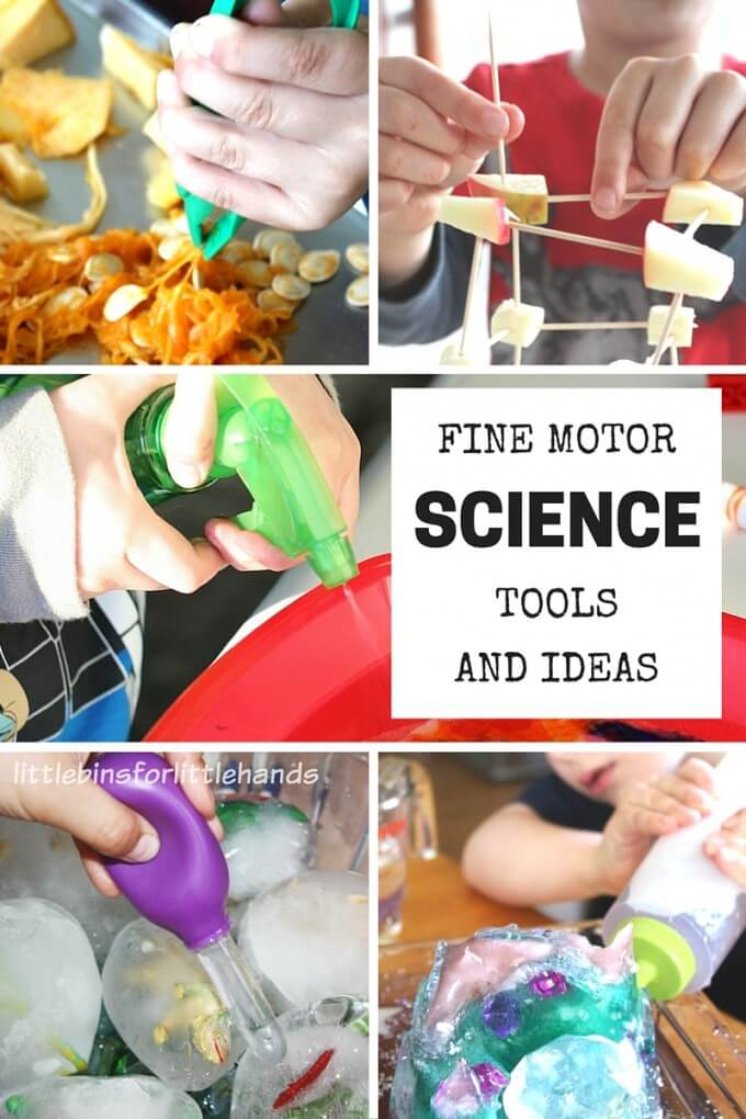 Favorite Fine Motor Ideas and Tools for Science Activities